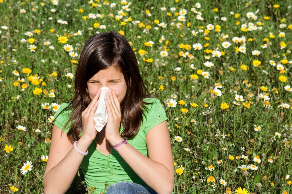 Distinguishing Between a Cold, Allergies, and Sinus Problems